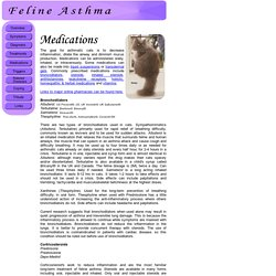 Feline Asthma & Other Respiratory Disorders