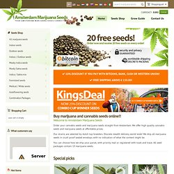 Buy feminized marijuana seeds and cannabis seeds from Amsterdam - high quality marijuana seeds (cannabis seeds)