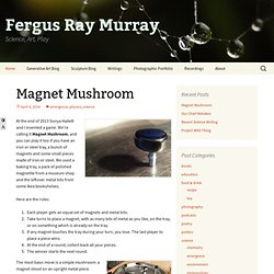 Fergus Ray Murray's Homepage - Photography, Animation, Science, etc.
