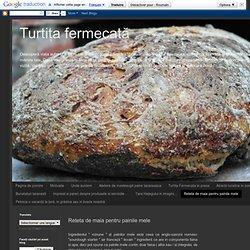 Reteta de maia pentru painile mele