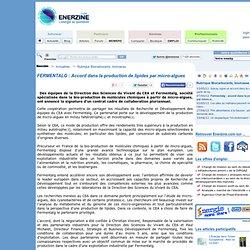 FERMENTALG : Accord dans la production de lipides par micro-algues > Biocarburants, biomasse