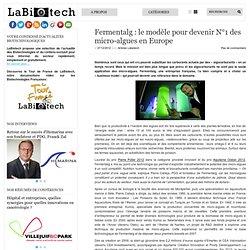 Fermentalg : le modèle pour devenir N°1 des micro-algues en Europe.