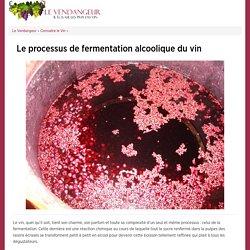 Le processus de fermentation alcoolique du vin