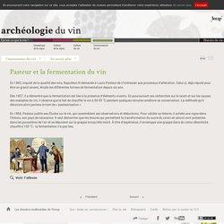 Pasteur et la fermentation du vin