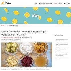 Lacto-fermentation : ces bactéries qui vous veulent du bien - Yuka