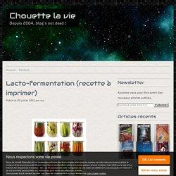 Lacto-fermentation (recette à imprimer)
