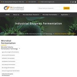Industrial Enzymes Fermentation - Creative Biogene Microbiosci