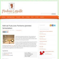 Kéfir de Fruits avec Ferments (première fermentation)