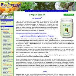L-Arginin Base - fermentativ hergestelltes Arginin