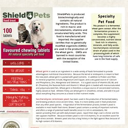 Fermented wheat germ extract, pets. illness, animal immune system