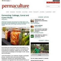 Fermenting: Cabbage, Carrot and Cumin Pickle