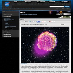 s Fermi Shows That Tycho's Star Shines in Gamma Rays