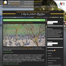 GASTRONOMIE AQUITAINE 13/11/13 La pintade fermière Label Rouge, une volaille de caractère