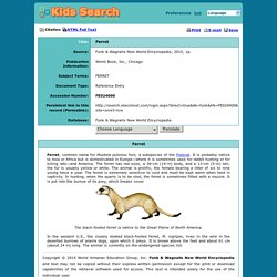 Ferret: Kids Search - powered by EBSCOhost