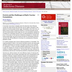 Ferrets and the Challenges of H5N1 Vaccine Formulation