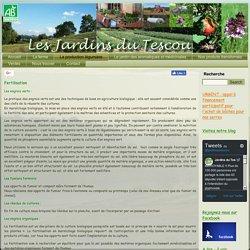Fertilisation et protection naturelle des plantes