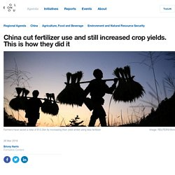 China cut fertilizer use and still increased crop yields. This is how they did it
