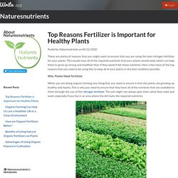 Top Reasons Fertilizer is Important for Healthy Plants by Naturesnutrients