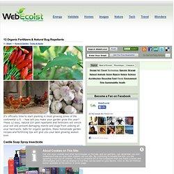 webecoist.momtastic