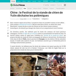 Chine : le Festival de la viande de chien de Yulin déchaine les polémiques