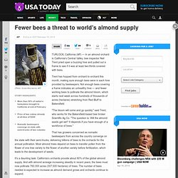 USDA TODAY 16/02/13 Fewer bees a threat to world's almond supply