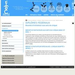 FFEC : Diplômes fédéraux : brevets d'initiateur aux arts du cirque