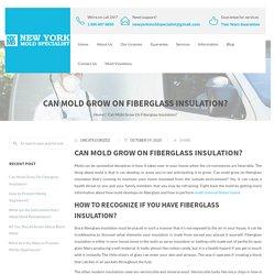 Can Mold Grow On Fiberglass Insulation? - New York Mold Specialist