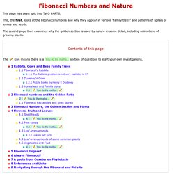 The Fibonacci Numbers and Golden section in Nature - 1