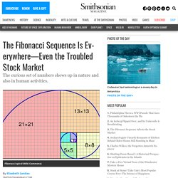 The Fibonacci Sequence Affects the Stock Market