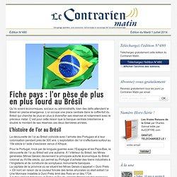 Fiche pays : l'or pèse de plus en plus lourd au Brésil