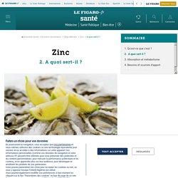 Zinc - A quoi sert-il ? - Fiches santé et conseils médicaux