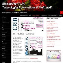 Blog du prof T.I.M. – Lycée du Mené – Informatique