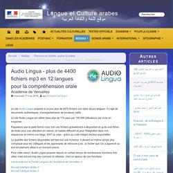 Audio Lingua - plus de 4400 fichiers mp3 en 12 langues pour la compréhension orale