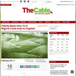 Fidelity Bank: Only 1% of Nigeria's land mass is irrigated