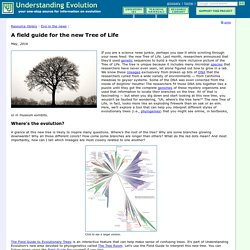 A field guide for the new Tree of Life