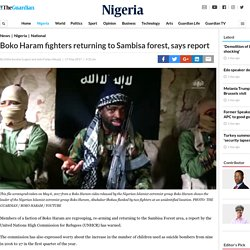 Boko Haram fighters returning to Sambisa forest, says report — Nigeria — The Guardian Nigeria Newspaper