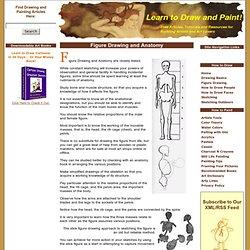 Figure Drawing and Anatomy