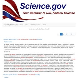 thin filament length: Topics by Science.gov