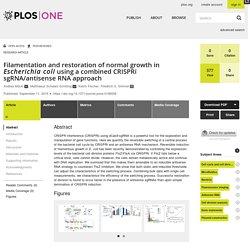 Filamentation and restoration of normal growth in Escherichia coli using a combined CRISPRi sgRNA/antisense RNA approach