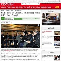 Saint-Paul-de-Jarrat. Top départ pour la filière bois énergie - 22/02/2014