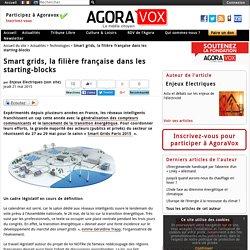Smart grids, la filière française dans les starting-blocks