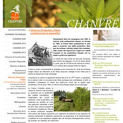 Filière de production du chanvre, culture du chanvre en France, producteurs chanvre, draps chanvre