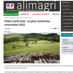 Filière forêt-bois : le plan recherche-innovation 2025