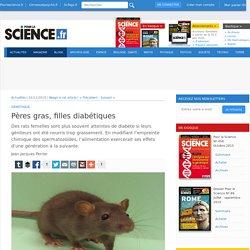 Pères gras, filles diabétiques - Pour la Science