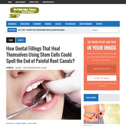 How Dental Fillings That Heal Themselves Using Stem Cells Could Spell the End of Painful Root Canals?