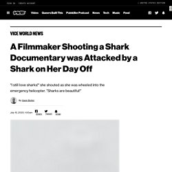 A Filmmaker Shooting a Shark Documentary was Attacked by a Shark on Her Day Off