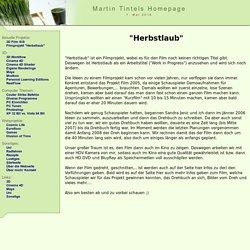 Martin Tintel Homepage: Filmprojekt Herbstlaub