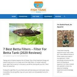 7 Best Betta Filters - Filter For Betta Tank (2020 Reviews)