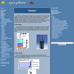 La filtration d'un aquarium, différents systèmes pour filtrer l'eau de facon efficace