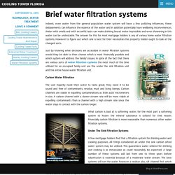 Brief water filtration systems